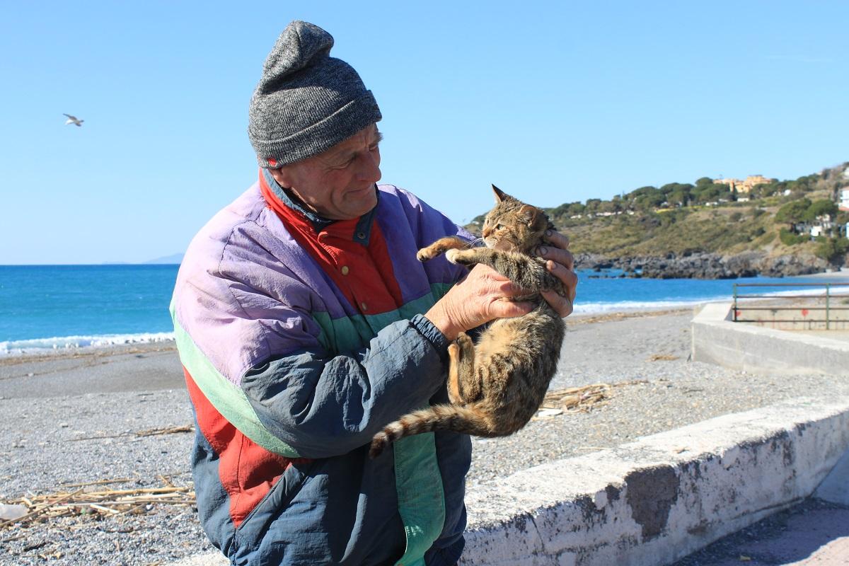 Bobcat rencontres